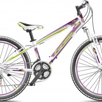 0015676_bicicleta-cross-speedster-24-fete