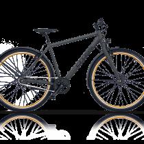 Bicicleta Cross C-Trax IGH 2019