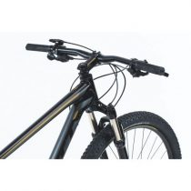 Bicicleta Scott Aspect 910 2019