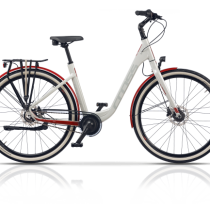 Bicicleta Cross X-Terra 2019