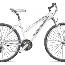 Bicicleta Cross Julia 2019