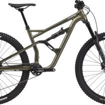 Cannondale Jekyll 29 4 2021