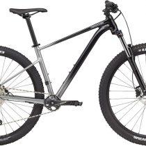 Cannondale Trail SL 4 2021 gri